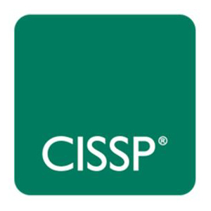 Our Specialties | Cyber Security | CISSP | blueStone Staffing