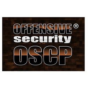Our Specialties | Cyber Security | OSCP | blueStone Staffing